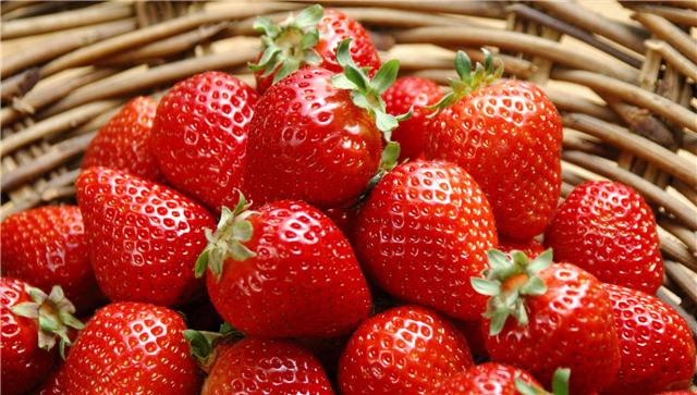 草莓浓缩汁
